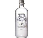 Suntory Ice Gin(サントリー アイスジン)